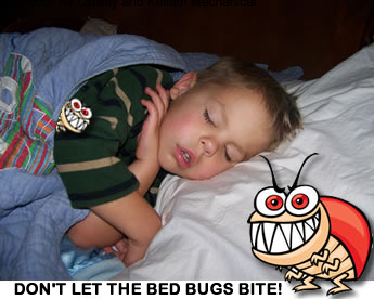 Bed Bugs Indoor Air Quality and Kellam Mechanical